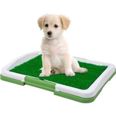 Puppy potty pad, Φορητή Τουαλέτα για Κουτάβια