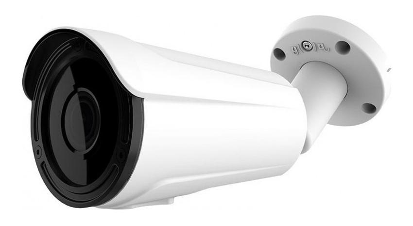 LONGSE Υβριδική Κάμερα Bullet CCTV-028, 2.1MP 1080p, IR 60M - LONGSE 26659