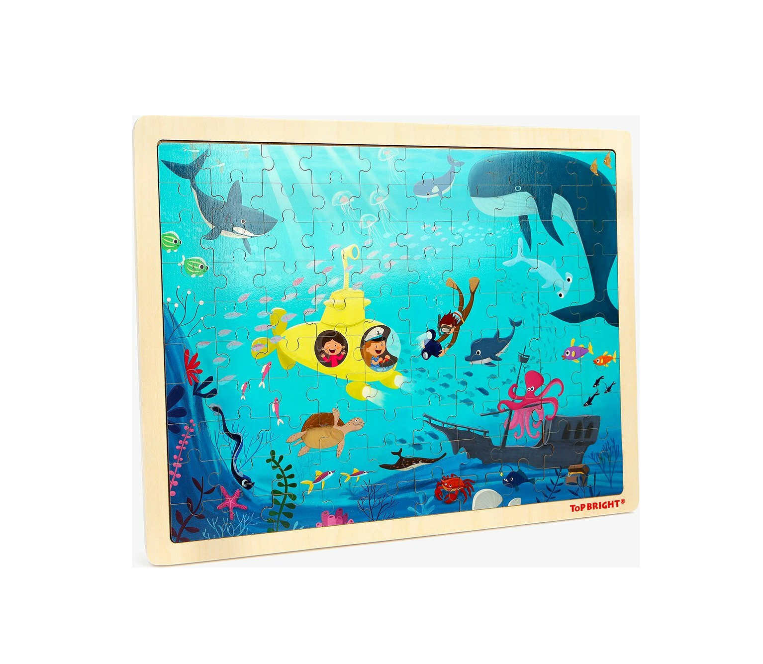 Underwater World 100pcs Top Bright 120393 460041